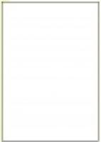 Custom Label 401 A4 BX100 1/sheet White 210x295.2