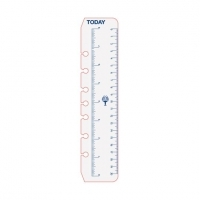 Dayplanner Refills EX5008 A4 Today Ruler