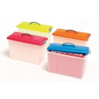 Crystalfile Carry Case Summer Colours 8007801 ClearBase/Blue Lid