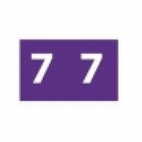 Avery Coding Label Numeric PK180 43347 (7) 25x38mm Purple