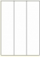 Custom Label 427 A4 BX100 3/sheet White 70x295.2