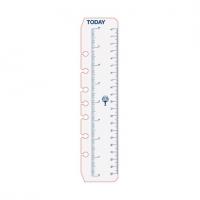 Dayplanner Refills DK1008 216x140 Today Ruler PK2
