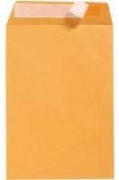 Cumberland Envelope 353x250 B4 StripSeal Gold 100g BX250