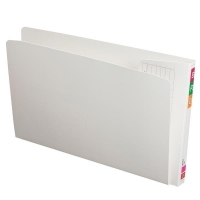 Avery Lateral File Fullview Fcap White 50mm Gussett BX100 165707