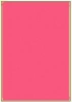 Custom Label 401 A4 BX100 1/sheet Fluro Pink 210x295.2