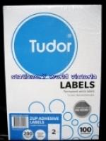 Tudor Laser Inkjet Labels A4 BX100 141069 (2/sh) 210x148mm
