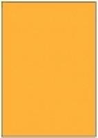 Custom Label 401 A4 BX100 1/sheet Fluro Orange 210x295.2